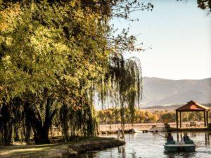 Jackpot Ranch Camp Verde